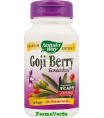 Goji Berry SE 60cps Antioxidant Secom Nature's Way