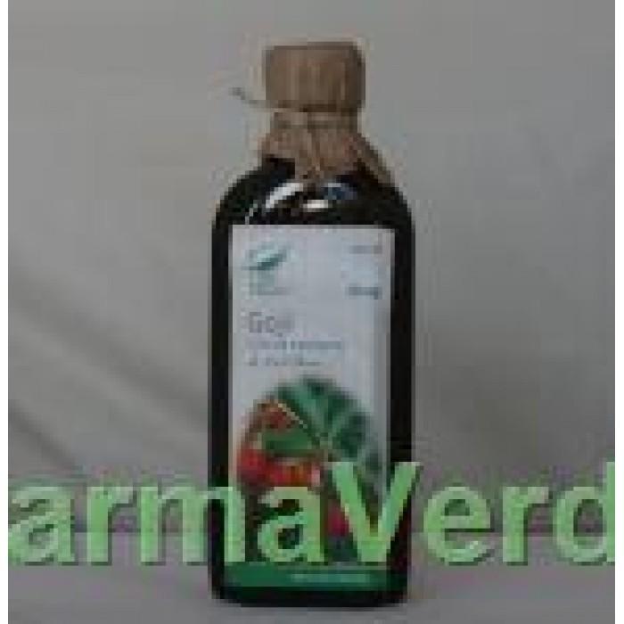Sirop Goji ( Catina Tibetana ) 100 ml Medica ProNatura