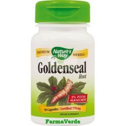 GoldenSeal 50 Capsule Antibiotic natural! Nature's Way Secom