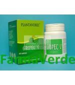 Gripec V 40 tb PlantaVorel
