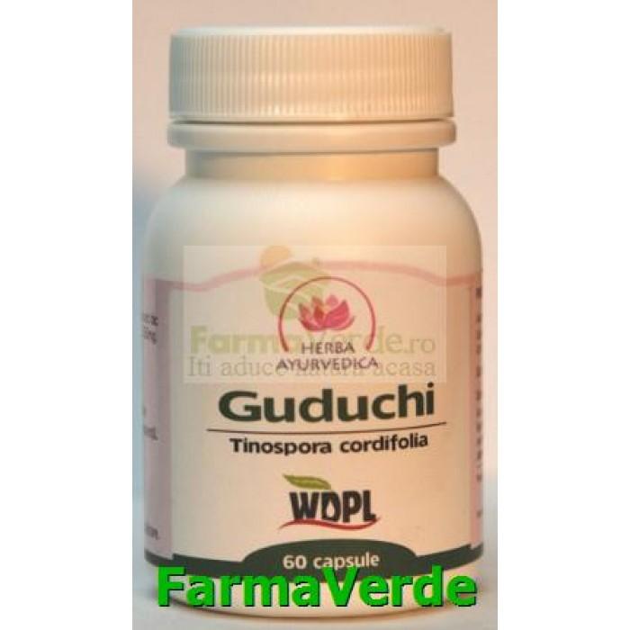 Guduchi Imunomodulator 500mg 60 capsule Herba Ayurvedica