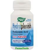 Hydraplenish Plus MSM,Colagen 60 capsule Secom Nature's Way