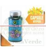 Hyper Dep-Diu (detoxifiant) 60 Capsule Hypericum