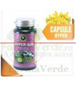 Hyper-Gin 60 Capsule Hypericum Plant
