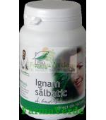 Ignam Salbatic 60 capsule Medica ProNatura