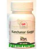 Kanchanar Guggul Tonic tiroidian 500mg 60 cps Herba Ayurvedica