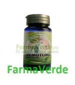 Memotonic 1200 mg 30 capsule Herbavit