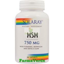 MSM Reumatism 90 Capsule Solaray Secom