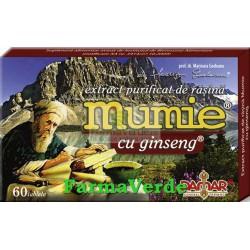 Extract Purificat de Rasina Mumie cu Ginseng 60 tablete Damar
