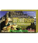 Extract Purificat de Rasina Mumie cu Propolis 60 tablete Damar