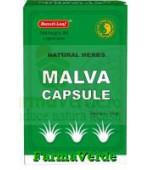 NALBA CEAI 30 capsule Mixt Com Dr Chen Patika