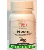 Neem Detoxifiant sanguin 500mg 60 capsule Herba Ayurvedica