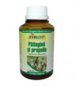 Sirop Patlagina+Propolis 200 ml Pontica Elidor