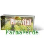 Biofarm Pinovital Antioxidant Puternic 30 Cpr
