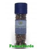 Condiment Amestec Boabe De Piper Rasnita Bio 30 Gr Sonnentor