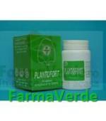 Plantafort 20 tb PlantaVorel