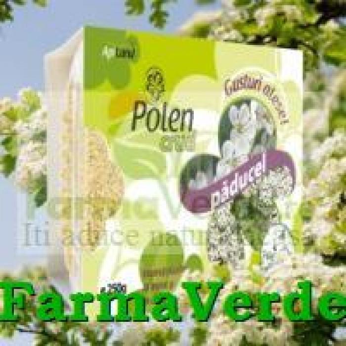 Polen Crud de Paducel 130 gr Api Vitalis