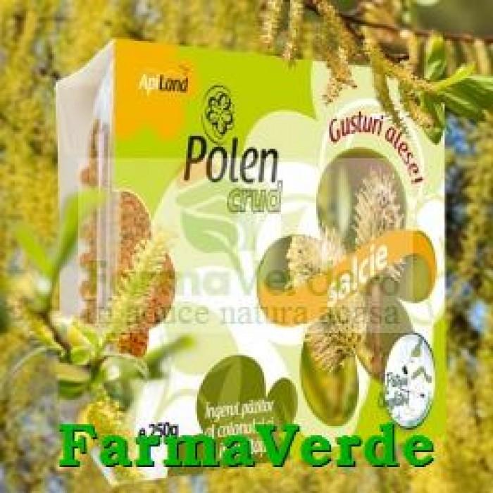 Polen Crud de Salcie 130 gr Api Vitalis