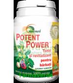 Potent Power Tonic si revitalizant 100 tablete Ayurmed