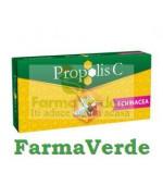 Propolis C plus echinacea 30 +10cpr PROMO Fiterman Pharma