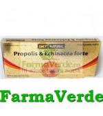 Propolis + Echinaceea Forte 10fiole 10ml 100mg 100mg Only