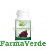 Resveratrol 30 capsule Medigrun