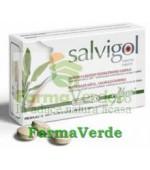 Salvigol Adulti 30 tablete Aboca