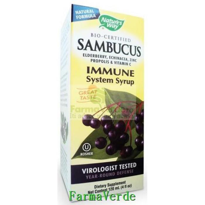 Sambucus Immune Syrup Cresterea Imunitatii 120ml Secom