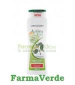 Gerocossen Activa Plant Sampon Par Gras 400 ml