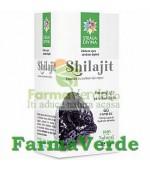 Shilajit 60 capsule 500 mg Steaua Divina