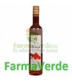 Sirop Catina 70% fruct 500 ml Steaua Divina