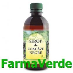 Sirop Coacaze Negre Fara Zahar 500 ml Hipocrate Omega Pharma