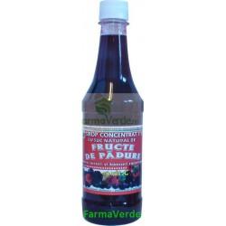 Sirop Concentrat din Fructe de Padure 500 ml Favisan