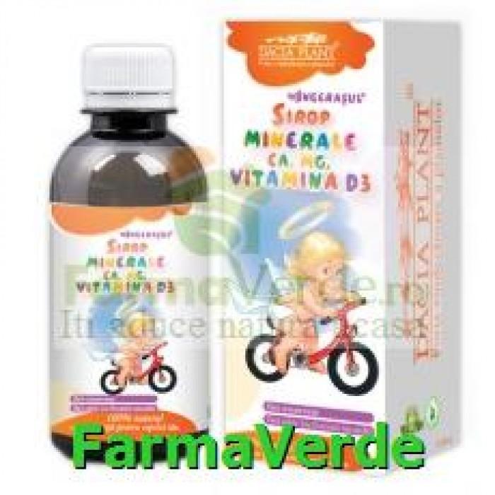 Sirop minerale Ca Mg Vitamina D3 Ingerasul 200 ml Dacia Plant