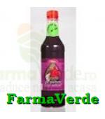 Sirop Pasteurizat  Fructe de Padure 500 ml Natex Adventure Import