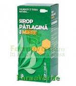 Biofarm Sirop de Patlagina cu Miere 100 ml
