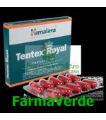 Tentex Royal Imbunatateste Erectia 10 capsule Prisum Himalaya