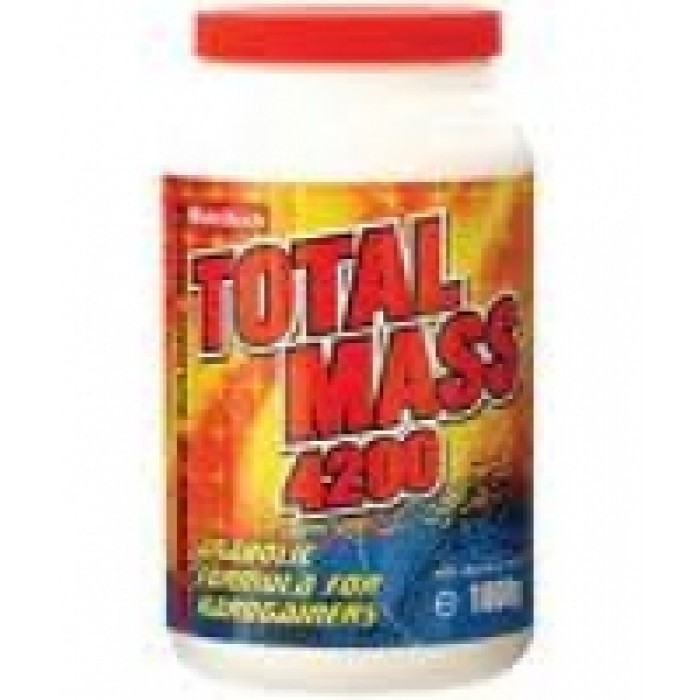 Total Mass 420 gr Fit Active Nutrition
