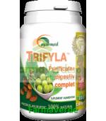 Trifyla 100 tablete Ayurmed
