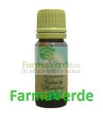 Ulei Esential de Cedru 10 ml Herbavit