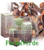 Ulei esential de cuisoare 10 ml uz extern Cosmetica Verde