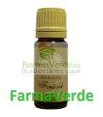 Ulei Esential de Fenicul 10 ml Herbavit