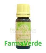 Ulei Esential de Lemongrass 10 ml Herbavit