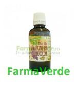 Ulei din Samburi de Struguri BIO 50 ml Herbavit