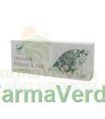 Usturoi & Paducel & Vasc 30 capsule Medica ProNatura