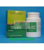 Vita-Roz 40 tb PlantaVorel