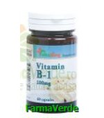 Vitamina B1 100 mg 60 capsule Vitaking