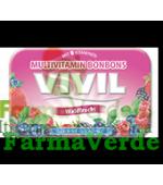 VIVIL Bomboane fructe de padure fara zahar cu 8 vitamine 50 gr