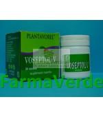 Voseptol 20 tb PlantaVorel