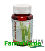 Wheat Embryo Germeni de grau 100 capsule BBM Medical